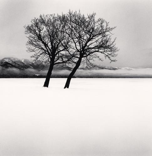 arbres noir & blanc de Michael Kenna