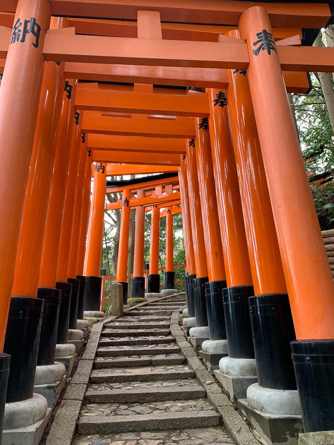 Fushimi Inari Gates, Kyoto, Japan, ©2020, Cyndie Burkhardt.