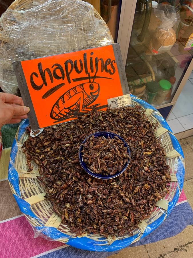 Chapulines, Mexico City, Mexico ©2019, Cyndie Burkhardt