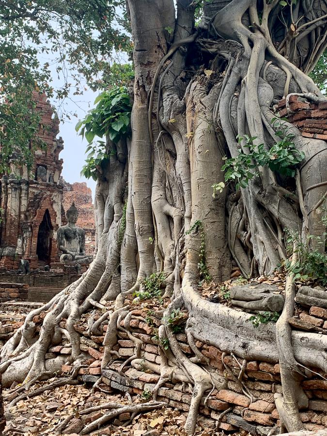 Wat Maha That, Bangkok, Thailand ©2019 Cyndie Burkhardt.