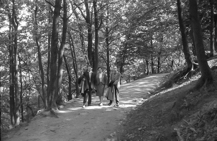 Львів, район Високого замку, 1964 рік