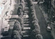 Проспект Тараса Шевченка, 1968