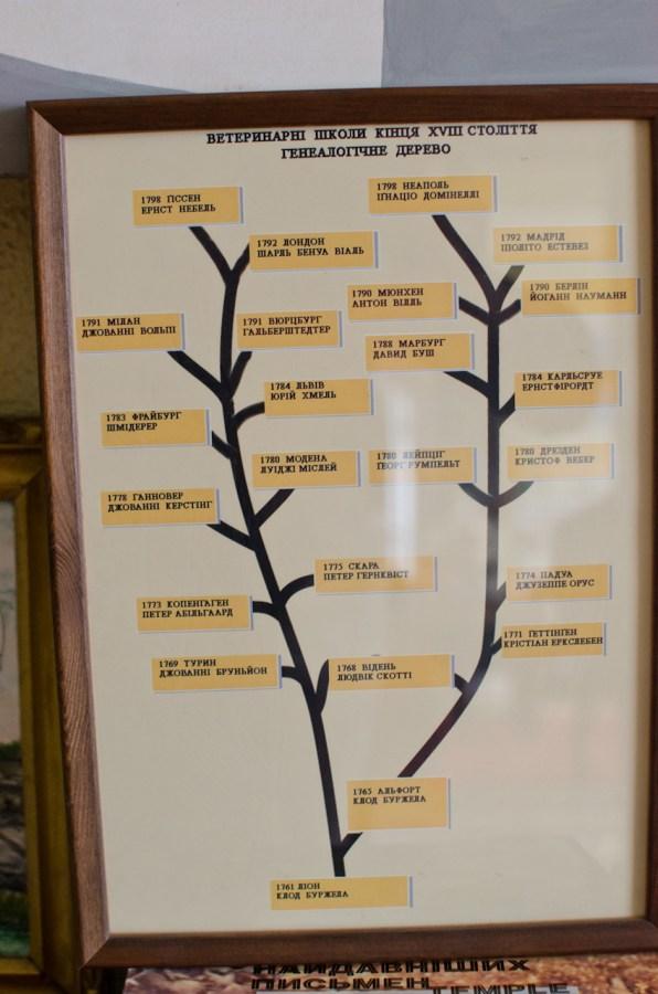 Генеалогічне дерево ветеринарних шкіл Європи.