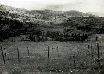 Вид на г. Плішку з західної сторони г. Кливи.