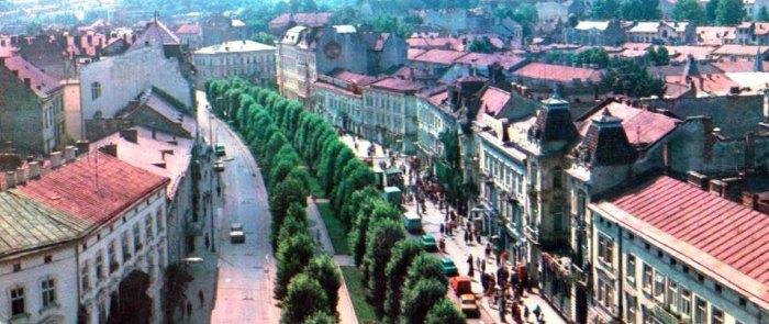 Алея проспекту Шевченка. Фото 1970-х рр.
