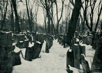 Загальний вигляд цвинтаря Фото з книги Balaban M. Dzielnica zydowska