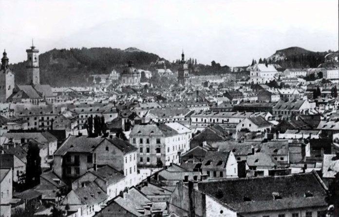 Загальний вид львівського середмістя з гори Вроновських. Фото Юзефа Едера