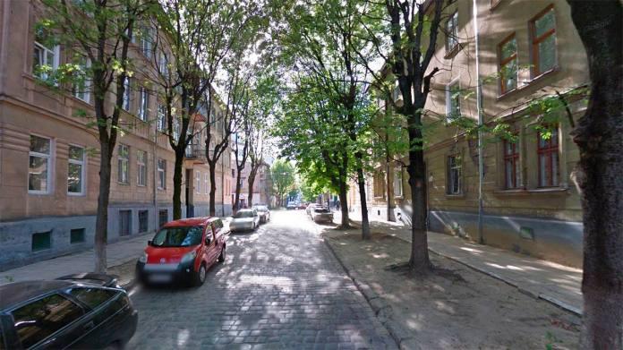 Сучасна вулиця Олени Степанівни