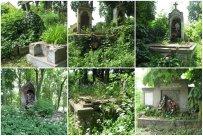Старий польський цвинтар Замарстинова на Топольній