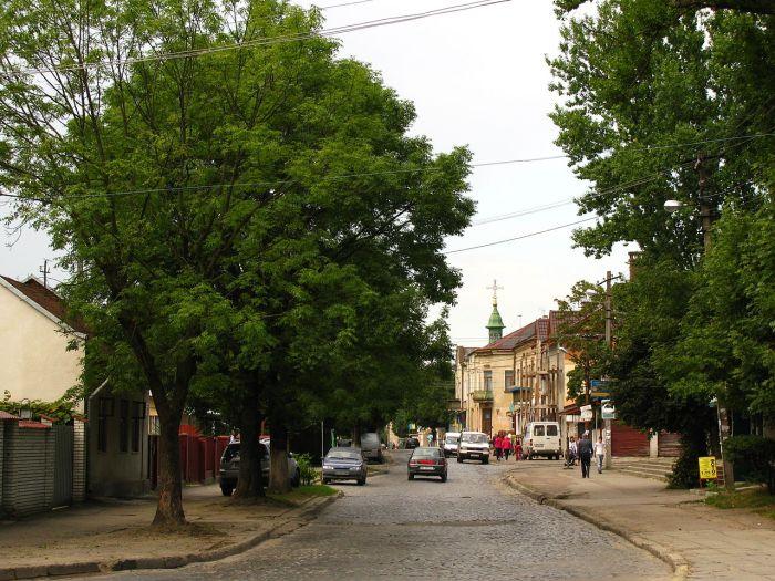 Вулиця Повітряна на Левандівці - одна із найдавніших вулиць сучасної Левандівки