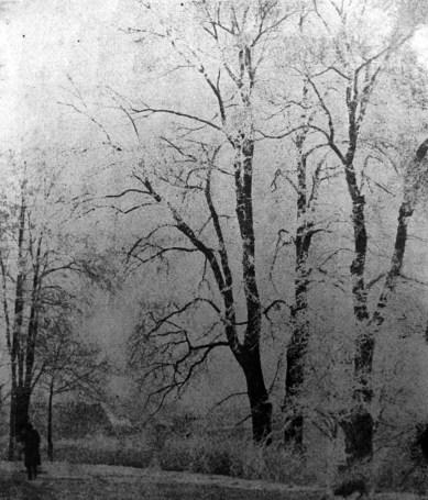 Євген Дурделло. Зима, поч. 1930-х рр. (Світло й Тінь. – 1934. – Ч. 4)