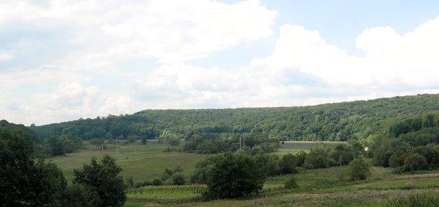 Чудовий краєвид від узлісся Борове на плато Шимкова Гора, або як вказується у інших джерелах Деревач Гора де ймовірно було розташоване древнє городище. На передньому плані болотиста долина річки Зубра.