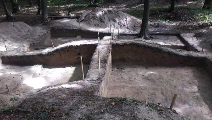 Розкоп курганного могильника. Фото: Софія Змерзла