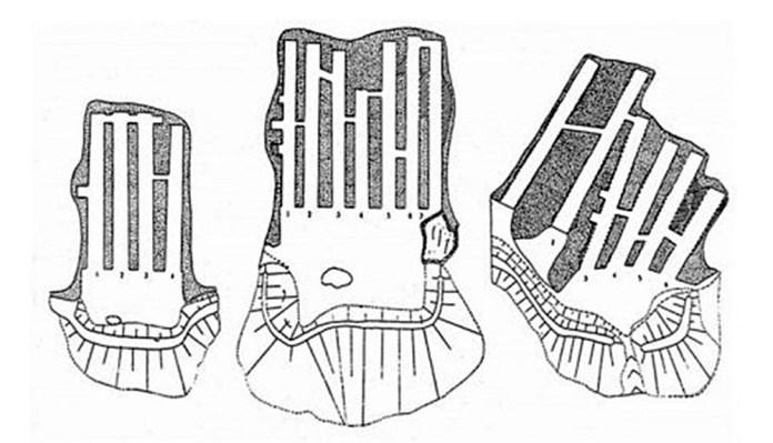План трьох печерних комплексів на Чорній (Лисій) Горі. Джерело: http://zaxid.net/news/showNews.do?stilske_gorodishhe__novi_doslidzhennya_znahidki_i_vtrati_zustrich_iz_orestom_korchinskim&objectId=1308997