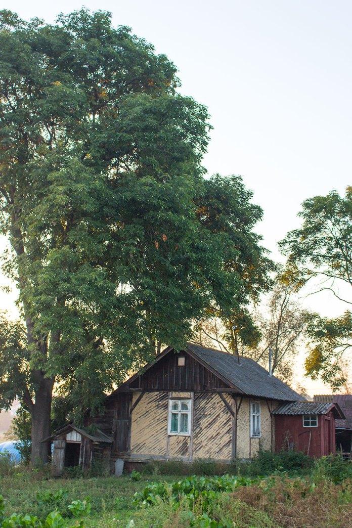 Хата на вулиці Січових Стрільців, 38 у селі Куликів Львівської області, де народився Богдан Ступка