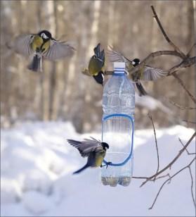 Годівничка для пташок