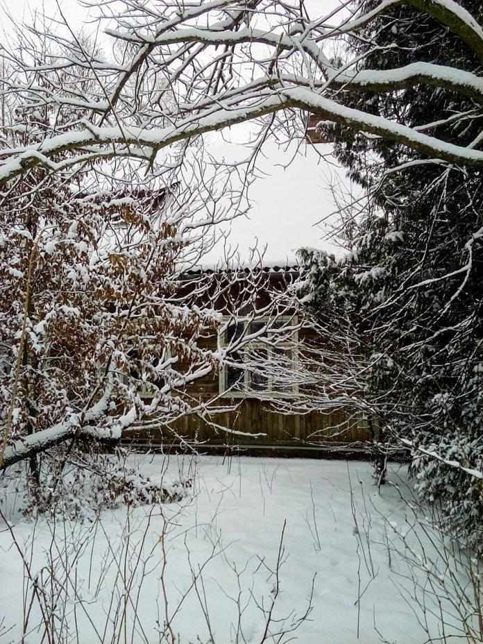 Дерев'яна хатинка посеред засніжених дерев, фото Ірина Хлян.