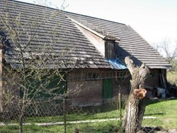 Господарська будівля у колонії Хоросно Нове