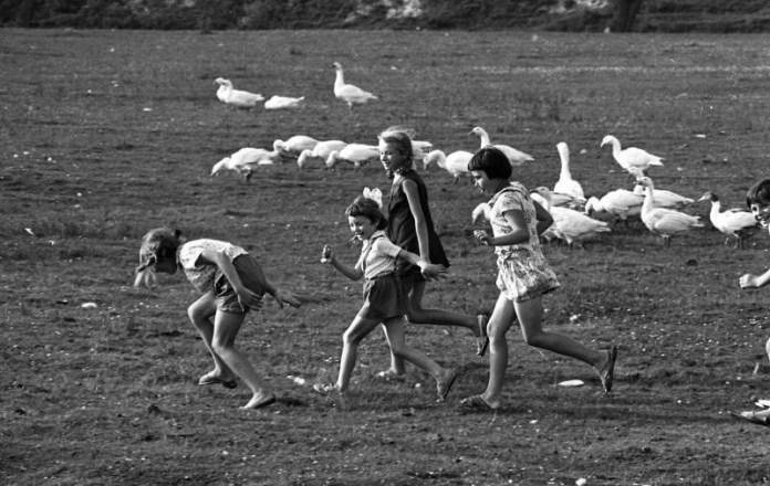Львівщина. Жовківський (кол. Нестеровський) район, 1970-ті рр. Фотограф: Всеволод Тарасевич