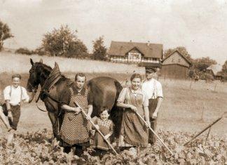 З архіву родини Матчуків, 1930-і рр. Грубешув