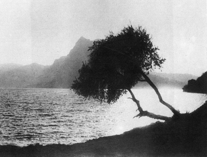 Чорно-біла фотографія Олександра Пежанського, 1930-ті рр.