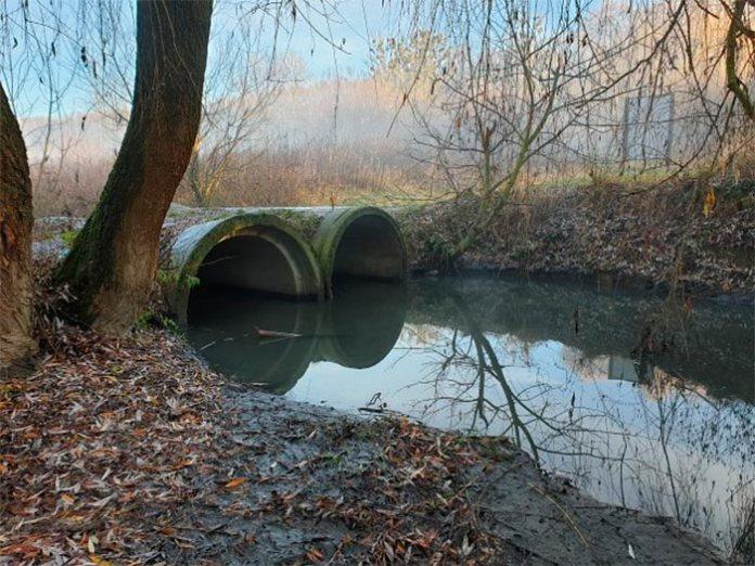 Річка Зубра на Сихові значно повноводніша