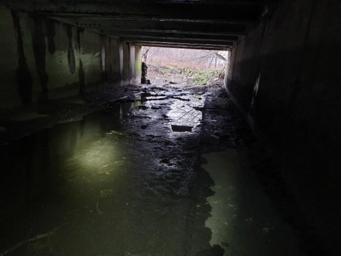 Залишаємо вхід за спиною і йдемо всередину тунелю