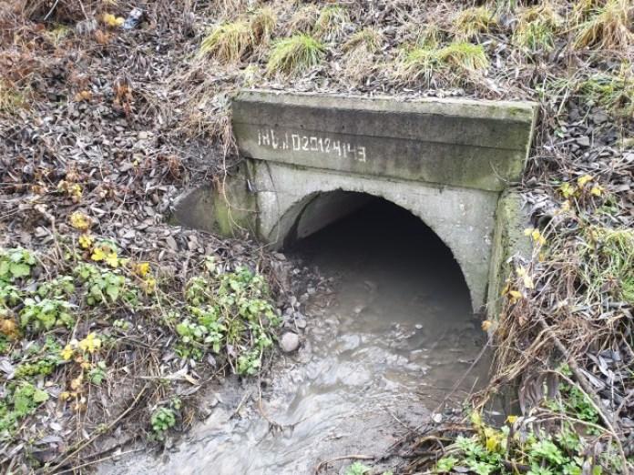 Ліва притока витікає ось звідси. Ці дві притоки, по суті, і є найдальше живлення Білогорського потоку яке вдалося виявити. Вокзал не рахуємо 😊
