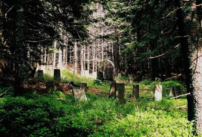 Старий Німецький Цвинтар, 2009 рік. (с) Любомир Ремінецький