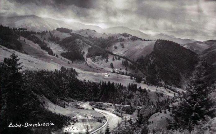 Жаб'є, вид на гору Дземброню. Фото початку ХХ ст. Джерело: https://polona.pl/item/zabie-dzembronia