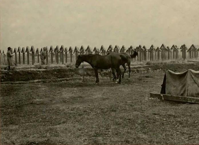 Кладовище на околиці Сокаля, 1914-1918 рр.