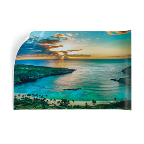 Canvas Decor Canvas Acrylic Prints Canvases