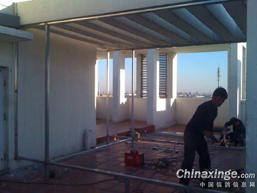 kitchen linoleum cabinet hinges 爱鸽舍,十年之痒--中国信鸽信息网相册