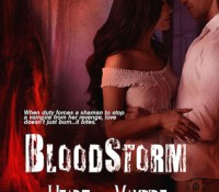 A Vicky Review – Bloodstorm by Amber Kallyn (3.75 Stars)