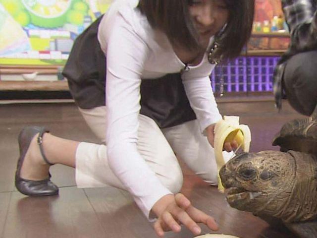テレビで乳首ポロリしてしまったタレントさんや女子アナ、出演者のお宝画像Vol.43