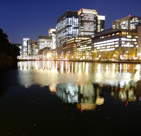 夕刻のお堀水面の鴨