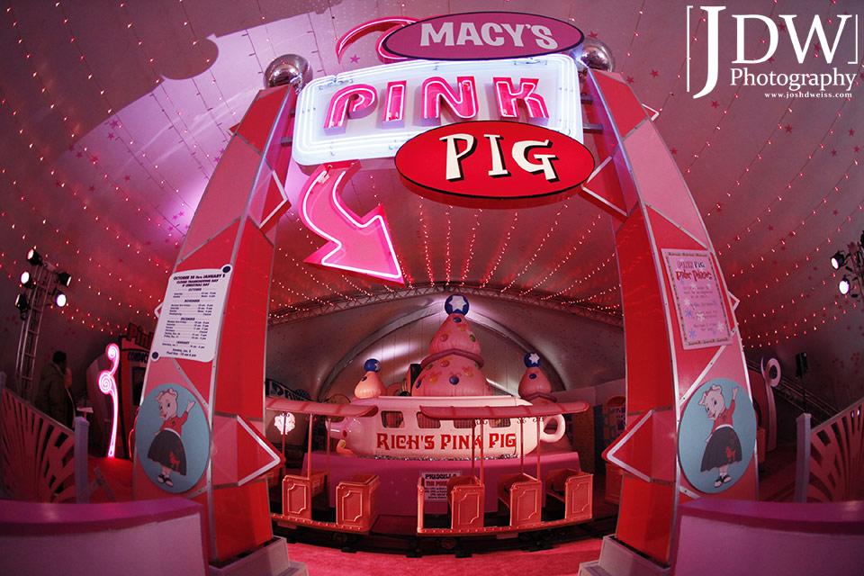 101030_JDW_PinkPig_0015