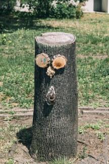 Gefällten Bäumen ein Gesicht geben in Mitte