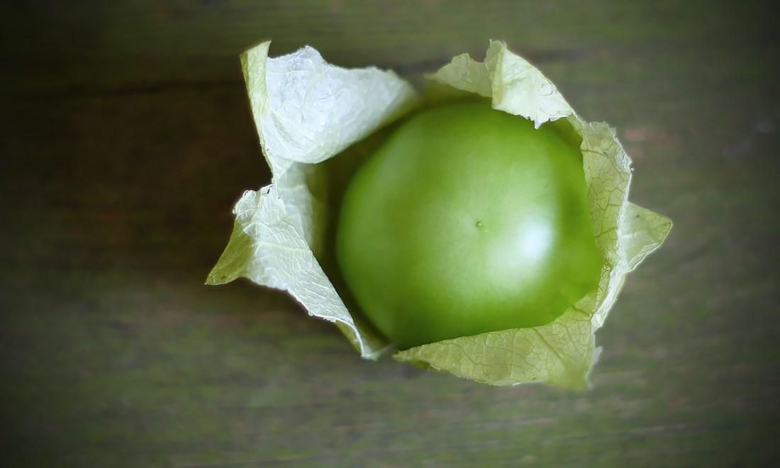 Still Life: Tomatillo