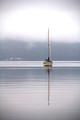 Alone but not adrift