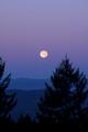 Moon setting over Laurelwood