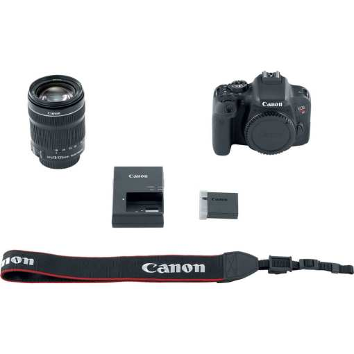Canon EOS Rebel T7i DSLR Camera with 18 135mm Lens 08 - Canon EOS Rebel T7i 24.2MP Digital SLR Camera with 18-135mm Lens