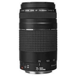 2de1300f 618e 4344 b1c1 9054753c1d0f - Canon Zoom Telephoto EF 75-300mm f/4.0-5.6 III Autofocus Lens