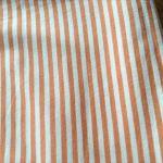 天竺ニットオレンジストライプ1
