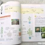 鉢で育てる果樹解説2