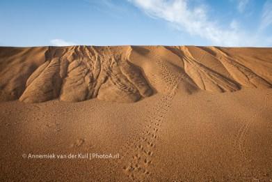 wpid-PhotoA.nl_Morocco_35.jpg