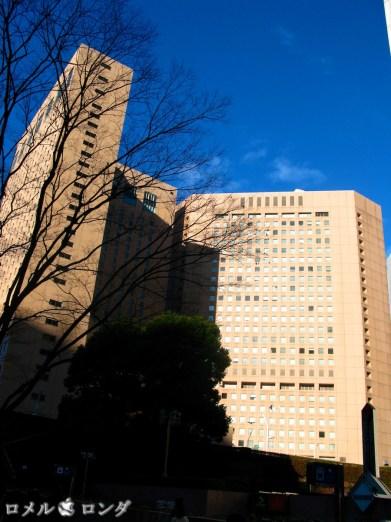 Shinjuku 16 (1)