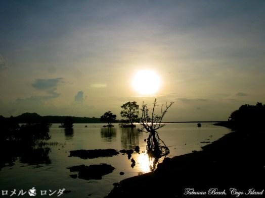 Sunset 21