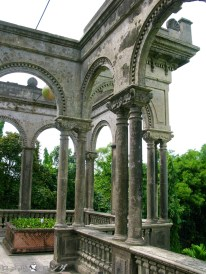 The Ruins 015