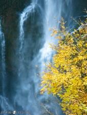 Kegon Falls 015